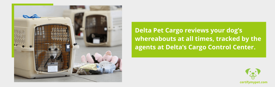 delta pet cargo