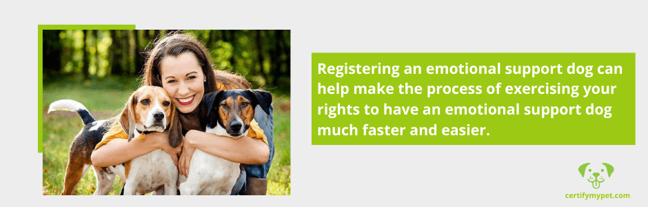 Benefits of Registering Your Emotional Support Dogs