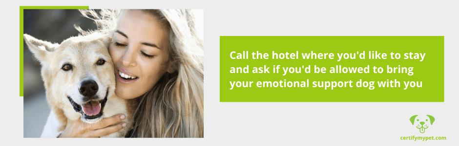 Can Hotels Refuse Emotional Support Dogs