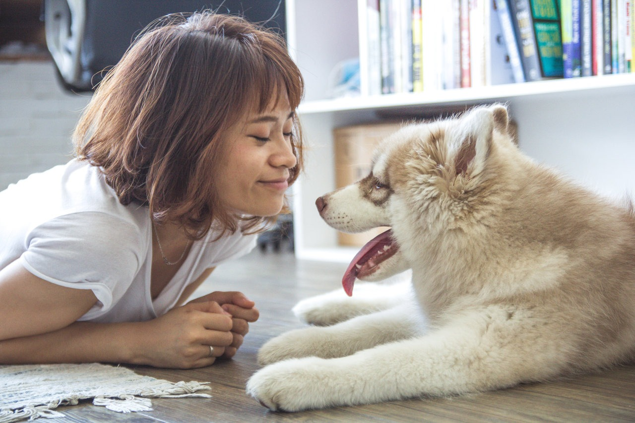 Can I Get an Emotional Support Dog for Depression