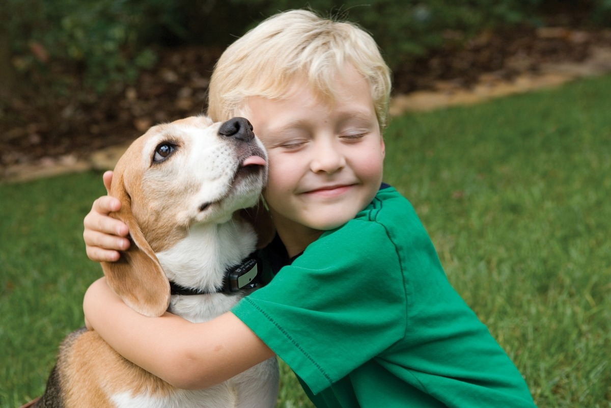 Can Children With Emotional Problems Be Eligible for Emotional Support Dogs?