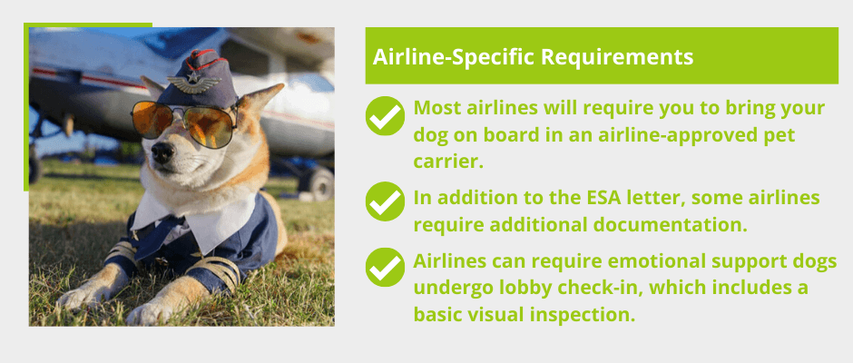 ESA Dor Airline-Specific Requirements