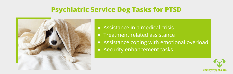 Psychiatric Service Dog Tasks for PTSD