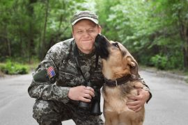psychiatric service dogs really help veterans with ptsd