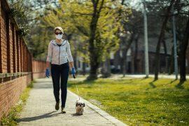 Walking Your Dog During Coronavirus Pandemic