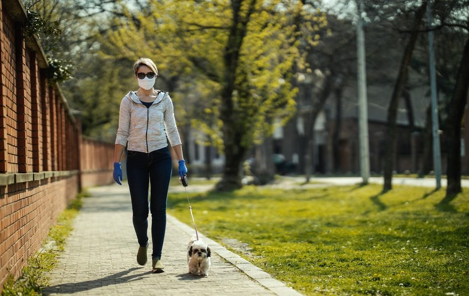 Walking Your Dog During Coronavirus Pandemic