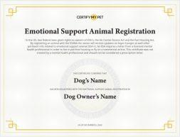 cmp_certificate 1
